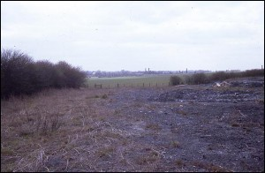 Site of Ilott Wharf in May 1971.